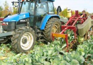 Univerco Cabbage Harvester