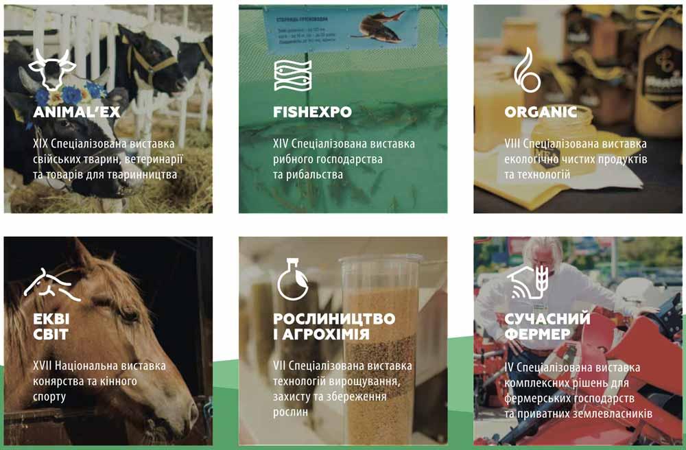agro 2020 plan2 - AGRO-2020